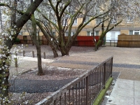 Camden Council Will Remove Three Trees